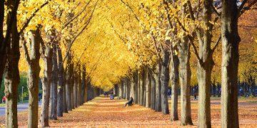 Rủ nhau đến 7 địa điểm du lịch tuyệt đẹp trong mùa Thu
