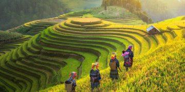Vẻ đẹp sững sờ của Việt Nam trên báo Anh