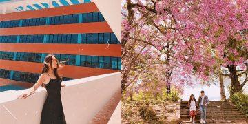 Đà Lạt cũng có một ngôi trường check-in đẹp không thua kém gì Hàn Quốc