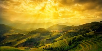 Ngắm mùa lúa vàng tháng 9 – đừng bỏ lỡ những địa điểm này