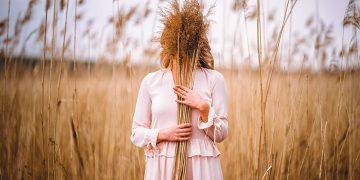 Kinh nghiệm du lịch Bình Liêu mùa cỏ lau