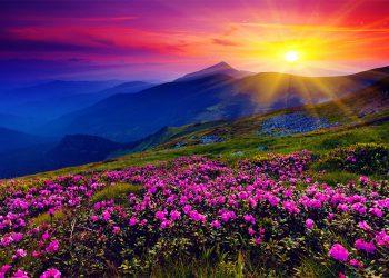 Những thung lũng tuyệt đẹp với phong cảnh mê hoặc tại Ấn Độ